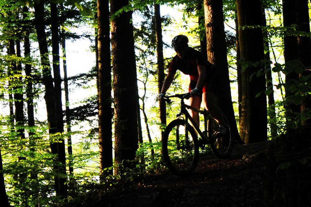 MTB - Fallen für Mountainbiker