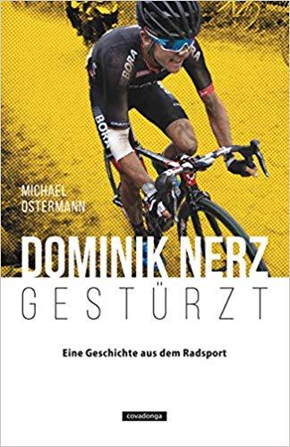 Buch Dominik Nerz Gestürzt